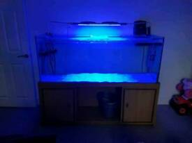 Fish tank lights