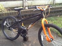 X-rated excite dirt jump bike excellent condition