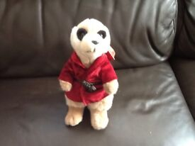 Meerkat with coat on
