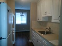 Beautiful fully renovated apartment for rent millwoods