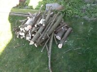 Fire wood. Ideal for starting fire