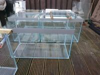 fish tank 18x15x15