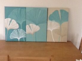 NEXT Three canvas pictures as new in teal colour