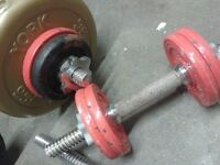 Dumbbell weights, gym weight lifting, body fitness