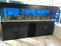 For sale 8ft x 2 ft x 2 ft black nd aquatic fish tank. It has LED lights is fully water tight.