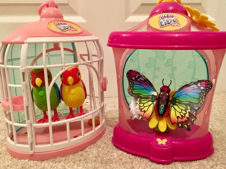 Little Live Pets Bundle - Love birds and Butterfly