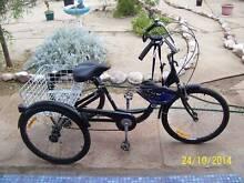 gomie3 wheel trike near new Crystal Brook Port Pirie City Preview