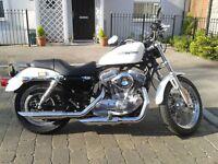 Pearl white Harley Davidson Sportster 883