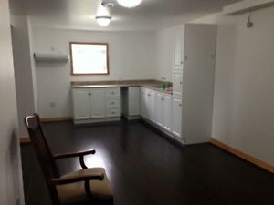2-3 bedroom apartment available July 1st