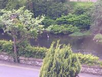 Idyllic Stone Built, Fully Renovated 2 Bedroom Cottage, With Views Overlooking The River