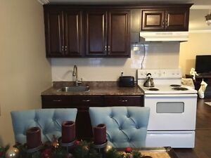 AVAILABLE - DOWNTOWN - Beautifully  Renovated 1 Bedroom + Den