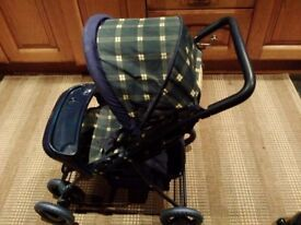 Childs Graco buggy (bear not included)