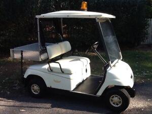 FABULOUS UTILITY golf cart! Tamborine Mountain Ipswich South Preview