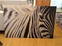 IKEA zebra wall canvas picture