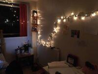 Beautiful single room in Camden Town