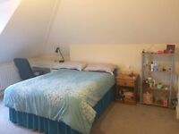 Spacious, en-suite double room in 2 bed flat in Clifton