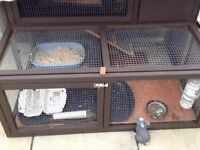 Two tier rabbit hutch good condition collection only
