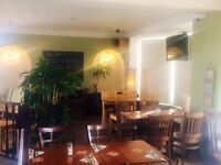 Head Chef required for expanding Bar, Restaurant and Guest House