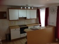Newly refurbished 1 bedroom flat for rent