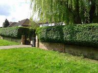 General garden cleaning,lawn mowing,hedge trimming,garden maintenance, turf installation