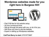 WordPress websites made for £100 right here in Burgess Hill
