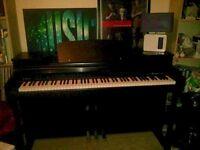 Digital piano Cranes JX180