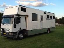 2001 Iveco Horse Truck Smeaton Grange Camden Area Preview