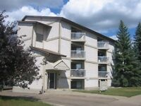 2 Bdrm w/ Balcony in Quiet South Side Family Bldg ~ Lincoln