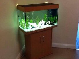 Jewel Rio 125 Fish Tank With Stand