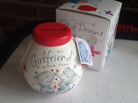 'Girlfriend's money saving pot..