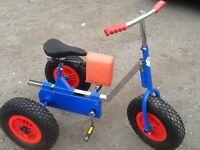 Special needs bike / trike