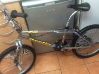 Beautiful bike done in chrome bmx stunt bike£40 can deliver for petrol suit 7 to 10 age