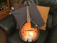 Mandolin,new condition,with spare strings and 2 books.