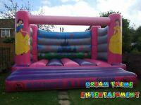 Bouncy Castle Disney Princess £500