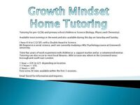 Primary and Pre-GCSE English, Maths and Science Private Home Tutoring (Growth Mindset)