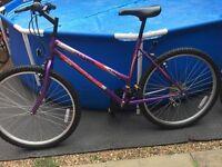 Adult Ladies Universal WildThing Bike