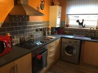 Handyman services available