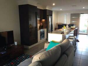 LARGE ROOM WITH DUCTED AIR-CON & OWN BATHROOM!! Doolandella Brisbane South West Preview