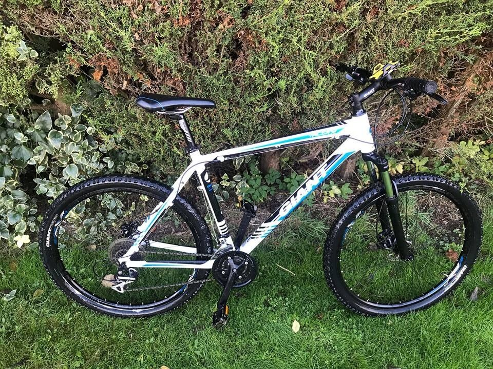 706c7e7f313 Giant Talon Mountain Bike 2015 XL - White, Black & Blue   in Welwyn ...