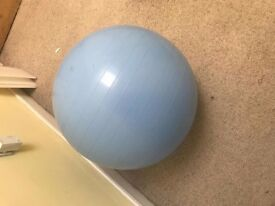 Fitness Yoga Exercise Ball