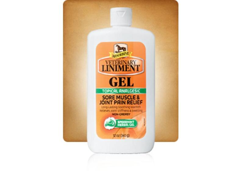 ABSORBINE VETERINARY LINIMENT GEL 12 Oz Muscle Joint Relief TOPICAL ANALGESIC