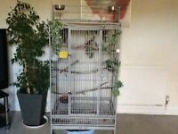 Large grey solid Parrot Cage