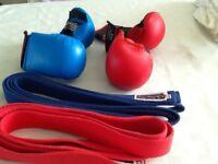 Blitz sparring gloves
