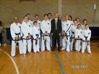 Taekwondo self defence in Epsom Surrey