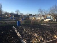 Allotments available in Hasland NOW on local site!