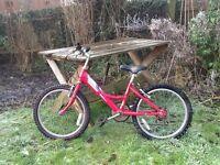 Raleigh Shugo girl's bicycle