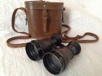 vintage brass binoculars and case,working fine.
