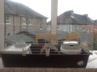 Guinea pig / rabbit cage, large (96x56x46) and accessories