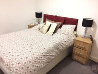 ROOM FOR RENT IN 2 BEDROOM BRAND NEW FULLY FURNISHED FLAT - JAN-(AND INCL) MARCH W/OPTION TO EXTEND