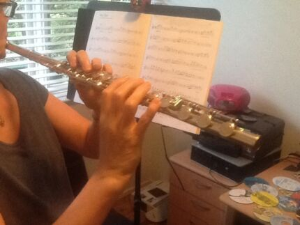 Interested in playing flute or piano with me just for fun??? Bilgola Pittwater Area Preview